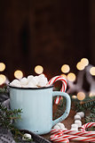 Cocoa with Marshmallows and Candy Canes