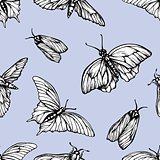 Vector seamless pattern with butterflies. Stylish graphic texture. Repeating print on pastel blue background