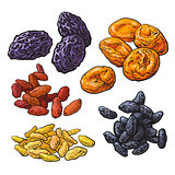 Set of dried fruits - prunes, apricots and raisins