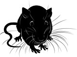 rats. rats animal vector black silhouette on a white background