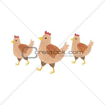 Three Brown Chickens Wakling