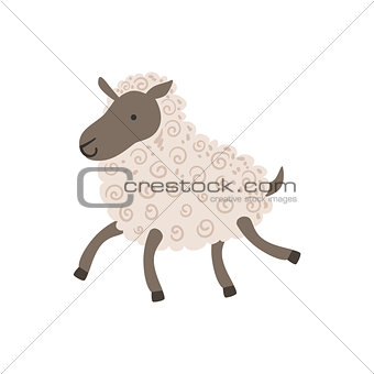 Grey Sheep With White Wool Walking