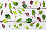 Green salad leaves on white background