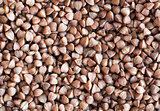 buckwheat grains background