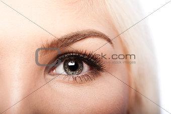 Beauty Eye and eyebrow