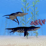 Liopleurodon Marine Reptile