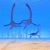Plesiosaurus Reptiles Undersea