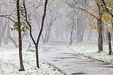 first snowfall in city park in autum