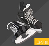 hockey skates isometric vector illustration