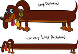 Long fun dachshund
