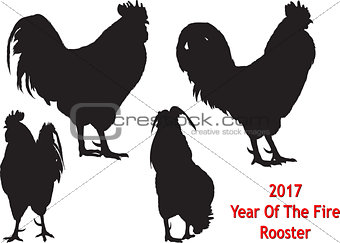 Black Rooster four positions