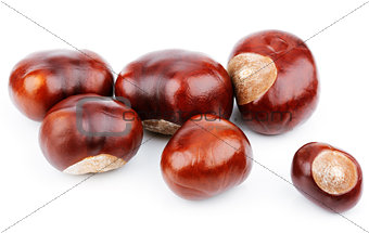 Group of chestnuts on white