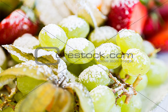 close up of dish with sugared fruit dessert