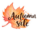 Background for seasonal autumn sale