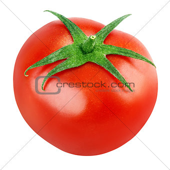 Single fresh red tomato on white