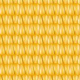 Realistic texture corn, vector illustration.