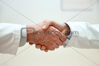 close up of doctors hands making handshake