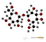 Illustration of Lactose Molecule isolated white background