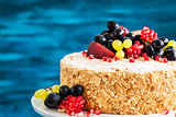Delicious homemade honey cake decorated with fresh fruits