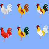 Rooster. Cock. Vector set of bird different color for new year 2017 greeting cards
