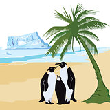 Climate warming with penguin and palm