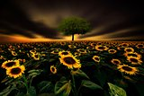 The little Green Tree and Sunflower Field