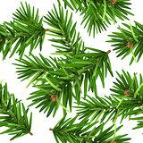 Green Christmas pine tree branch seamless background