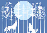 Howling wolf in fir tree forest, vector