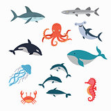 Marine Life Vector Design Illustration