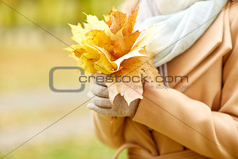 close up of woman with maple leaves in autumn park