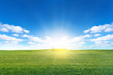 Green field with sun and blue sky with clouds