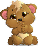 Bear sitting crying