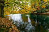 Fall Colors at Laurelhurst Park Portland Oregon