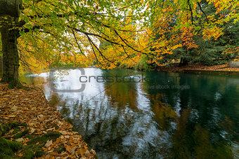 Fall Colors at Laurelhurst Park Portland Oregon