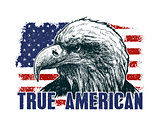 American eagle against USA flag.