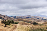 Northern California Landscape, Winter Day, Garin Regional Park, Hayward, California, USA