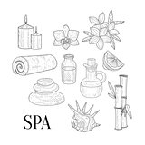 Spa Assosiated Isolated Hand Drawn Realistic Sketches