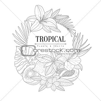 Topical Fruits And Plants Logo Hand Drawn Realistic Sketch