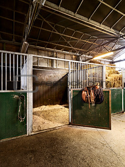 riding school with horse stable