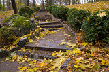 Staircase With Leaves in Autumn Park
