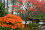 Gateway to Portland Japanese Garden