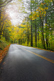 Historic Columbia River Highway in Fall