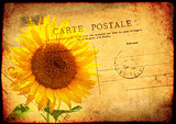 Grunge background with texture old paper and vintage post card