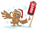 Owl Santa lights rocket fireworks 2017