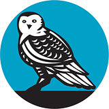 Snowy Owl Circle Retro