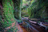 Finnich Glen aka Devil's Pulpit