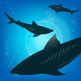 Sharks under water.