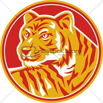 Tiger Prowling Head Circle Retro
