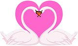 Swans valentine