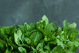 Mint leaves on gray background